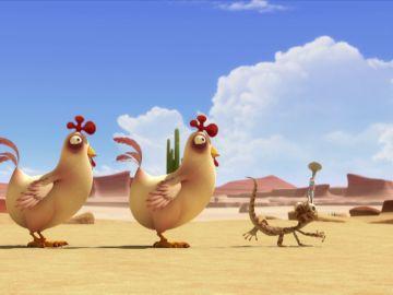 Encantador de gallinas