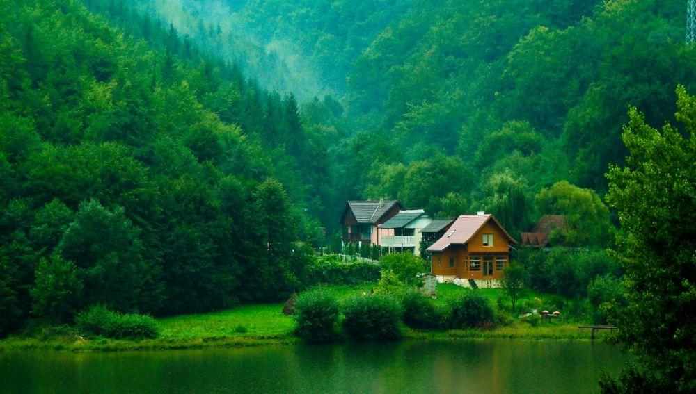 Casa en pleno bosque