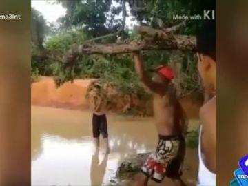 """El peligro de """"andarse por las ramas"""" en un pantano con poca profundidad"""