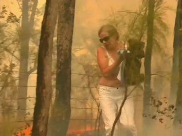 El desgarrador rescate de un koala en medio de las llamas por los incendios de Australia
