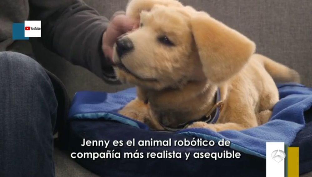 Así son los cachorros robóticos como alternativa a las mascotas