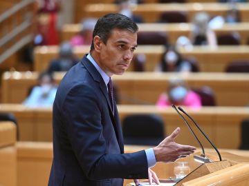 El presidente del Gobierno, Pedro Sánchez, en el pleno del Senado donde ha comparecido para informar sobre la evolución y gestión de la pandemia del coronavirus en diferentes ámbitos.