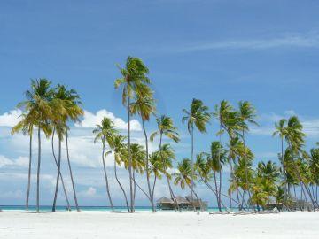 Una de las paradisiacas playas de las Maldivas
